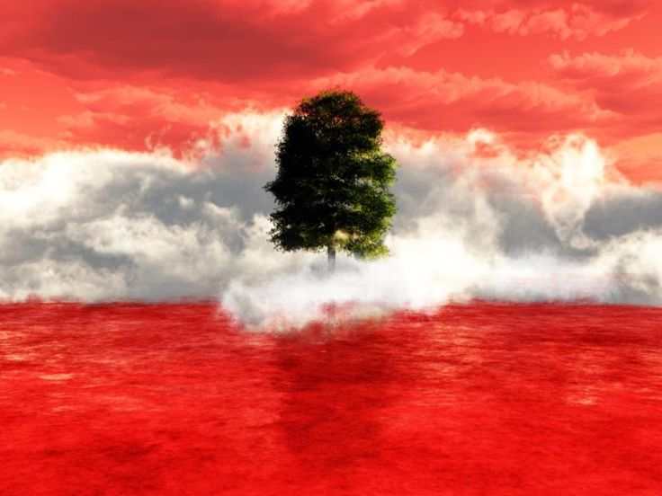 lebanon flag in awesome way