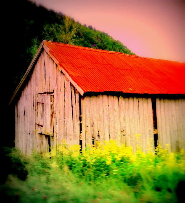 Under My Red Roof