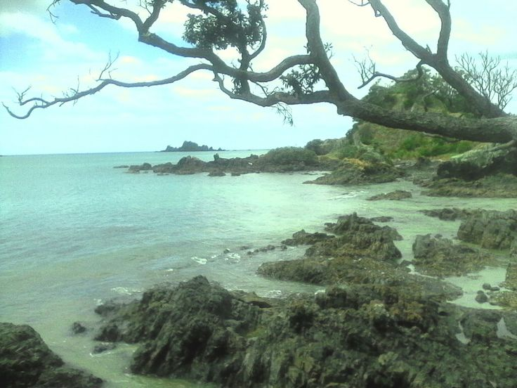 O.Bay in Northland