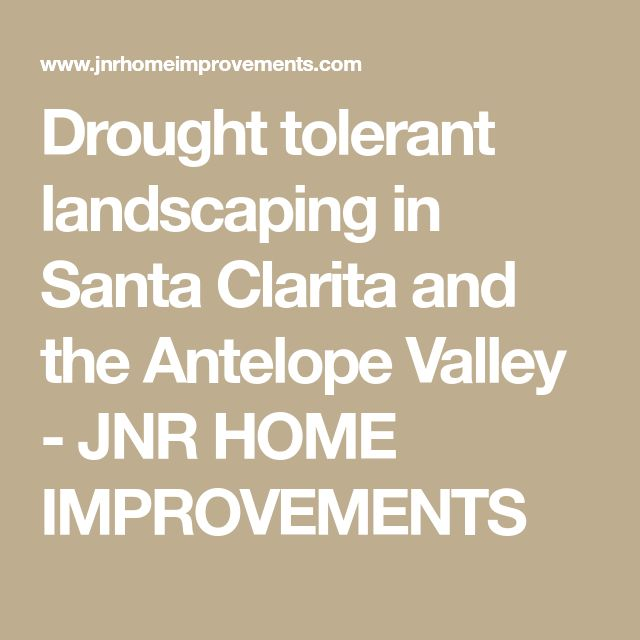 Drought tolerant landscaping in Santa Clarita and the Antelope Valley - JNR HOME IMPROVEMENTS