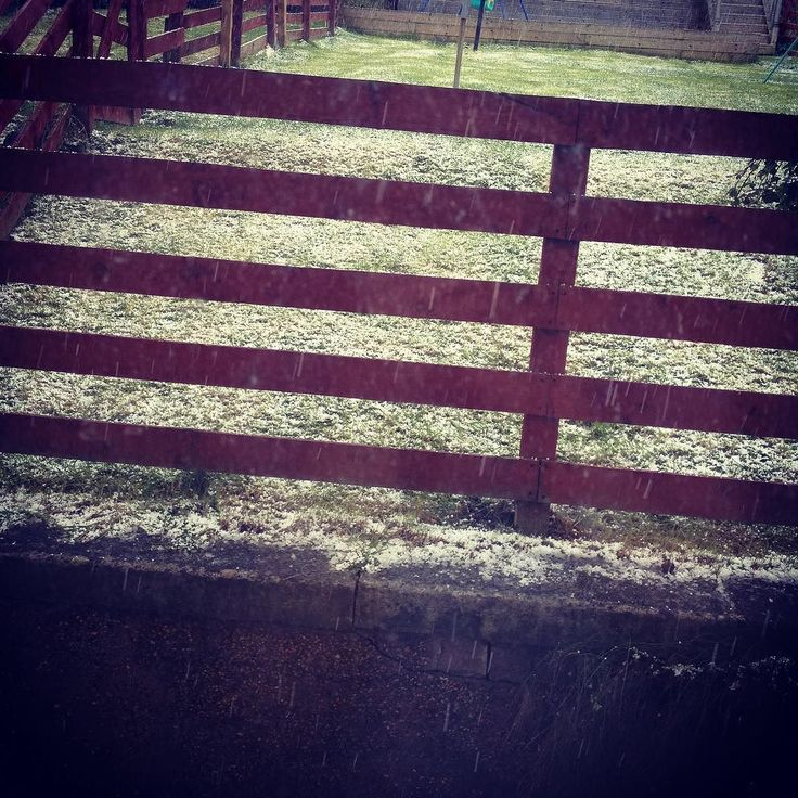 As usual in Scotland we got snow in April - this isn't snow though it's hail. Yep hail. From 2 days ago - we had snow too but not too much. #Glasgow #scotland #scottishweather #hail #notsnow #aprilweather #winteragain #weather #britishweather