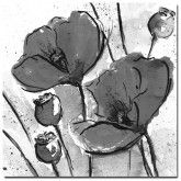 Abstract Poppy Stems, B&W (Square) on canvas  #art #floral #abstract  http://www.thecanvasartfactory.com.au