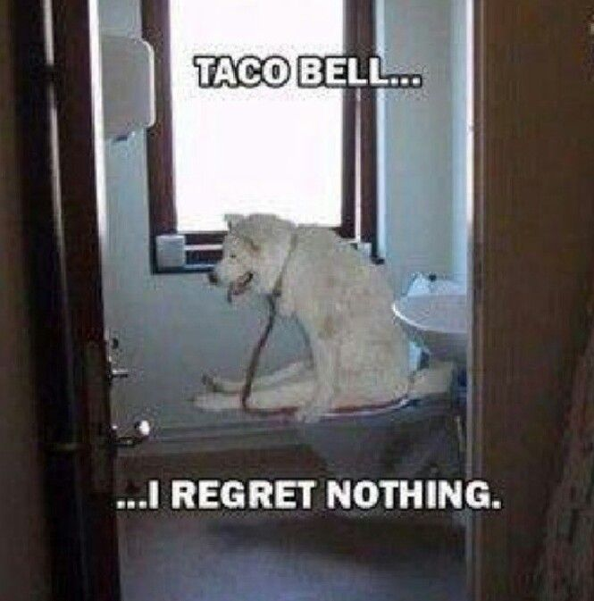 Regret nothing