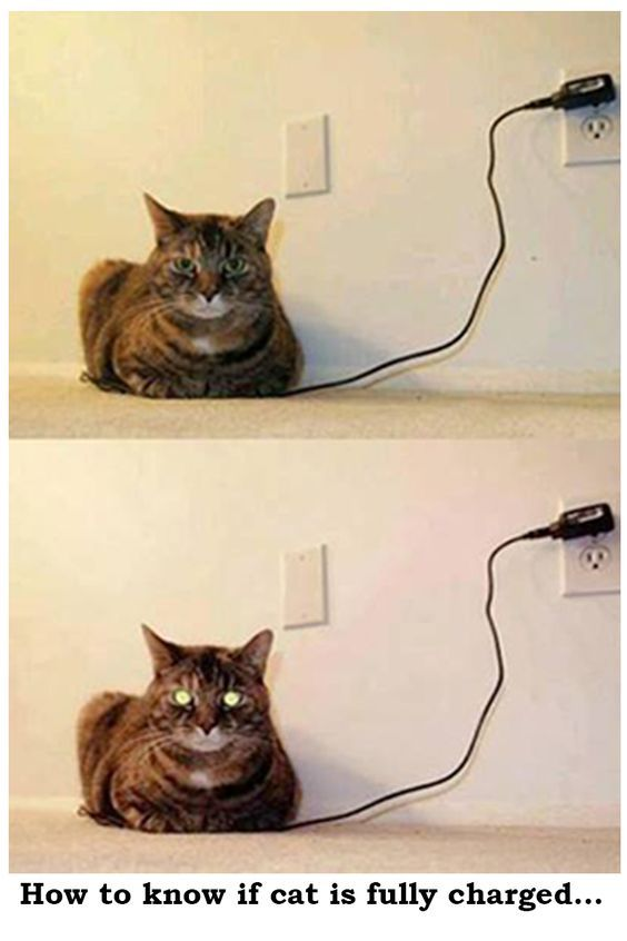 Fully Charged?