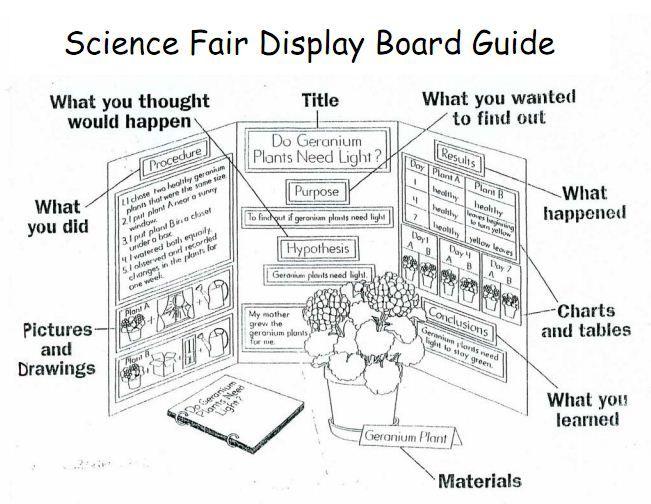 science fair project boards layouts xv-gimnazija