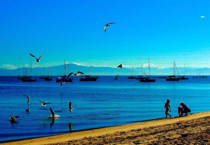 Santinho Beach - Florianópolis - SC by valcir.siqueira.7