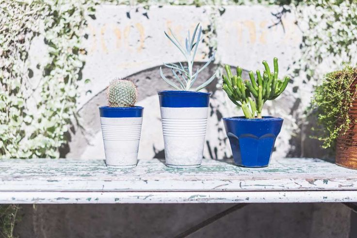 Malikai & Penny | PLANT VESSELS