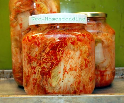 NeoHomesteading: Kimchi 101, Two Recipes for Korean Fermented Cabbage
