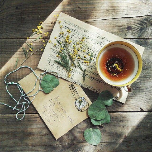 Morning teaHave a good day Утро теперь тихо входит в наш дом, легонько раздвигает зеленые березовые шторы,  мягко входит в окно и причудливым узором из веток, листьев и солнечных  зайчиков ложится на одеяло. А я улыбаюсь ему, этому новому утру... ...В этом маленьком коричневом конверте ко мне прилетело немного одесской весны, спасибо Лена @devo4ka_lena  #livefolk #liveauthentic #onthetable #vscorus #vsco #vscorussia #onvtable #чай #tea_is_my_religion