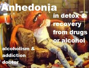 Anhedonia - inability to feel pleasure - is a common symptom in early recovery from addiction or alcoholism. It is a major cause of cravings and relapse. We discuss why it happens and what to do to beat it. Covered: detox, psychology, depression, bipolar, schizophrenia, medications, therapy, help, anxiety, treatment.