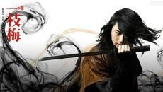 Return of Iljimae-want to see