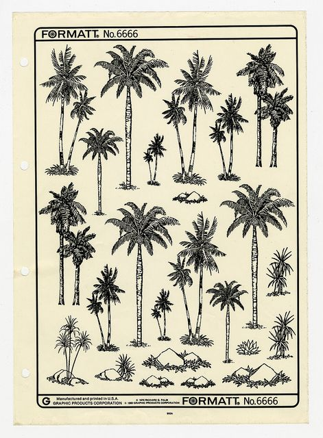 Palm Trees by Bart, via Flickr