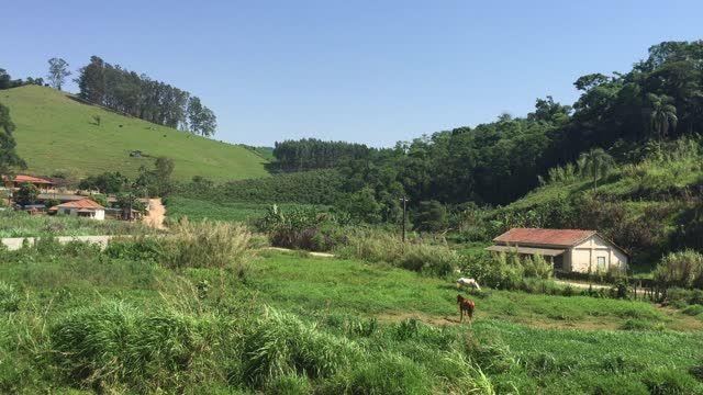Countryside Of State Of Sao Paulo Brazil Brazil Countryside