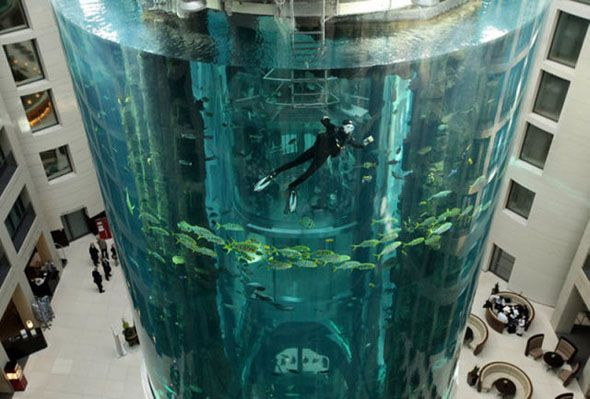 Unique AquaDom, the world's largest cylindrical aquarium at the Radisson Blu Hotel in Berlin, Germany.  Visit us on Facebook:  https://www.facebook.com/groups/imagesfromallovertheworld