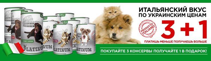 https://zoo-opt.com #Зоотовары оптом и в розницу > корм, клетки, поводок, игрушки, витамины для кошек или собак в интернет #зоомагазине