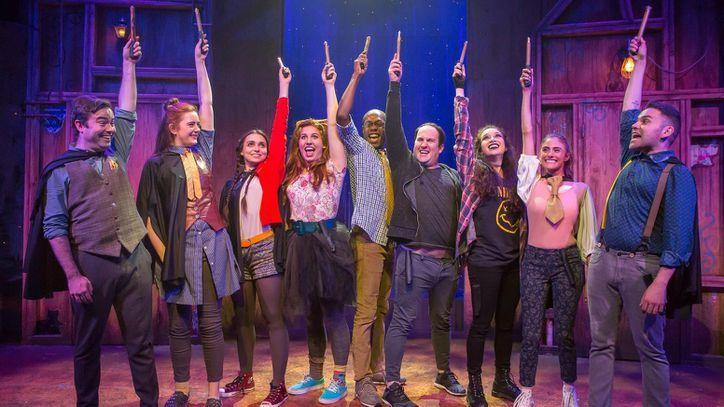 Harry Potter Fans Can Watch Hufflepuff Broadway Comedy Puffs Online Harry Potter Parody Harry Potter Hufflepuff