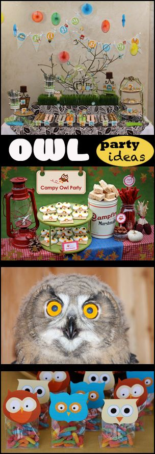 Owl Party Ideas--- I know what I want to do for my birthday! haha