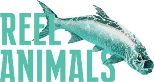 Reel Animals Boat Show and Fishing Expo! Saturday, November 18, 2017 10:00 AM Florida State Fairgrounds #boats #fishing #reelanimals #saturday #expo #fairgrounds #tampabay #florida #signaturefl http://www.reelanimalsboatshow.com/?utm_content=bufferbb190&utm_medium=social&utm_source=pinterest.com&utm_campaign=buffer