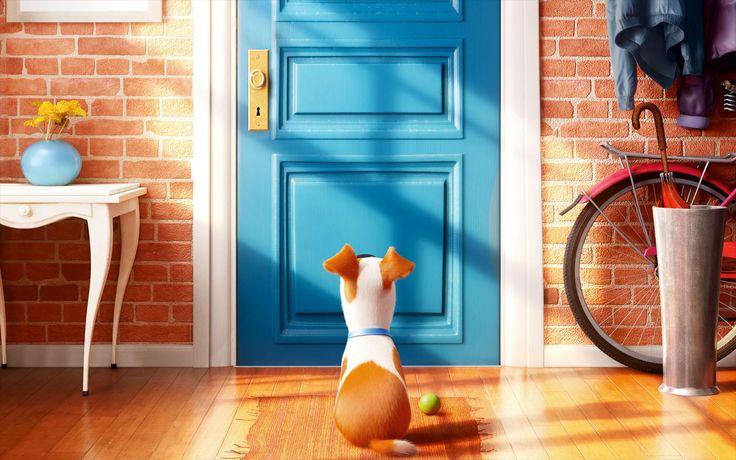 #perro,+#Dibujos+animados,+#vida+secreta+de+las+mascotas,+#la+vida+secreta+de+los+animales+domésticos
