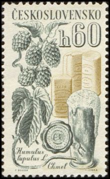 Czechoslovakia, 1961. Agricultural crops - Humulus lupulus