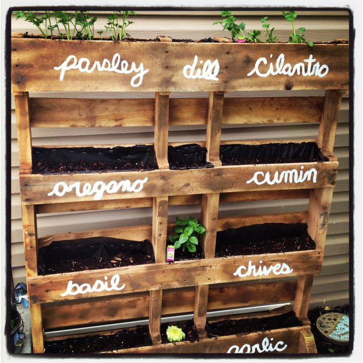 my pallet herb garden Josh made me...still have a few more herbs to add