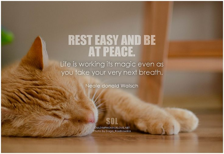 Rest easy and be at peace. Life is working its magic even as you take your very next breath. - Neale Donald Walsch #patience #quotes #quoteoftheday #quotestoliveby #inspiration #inspirational #inspirationalquotes #pictures #pictureoftheday