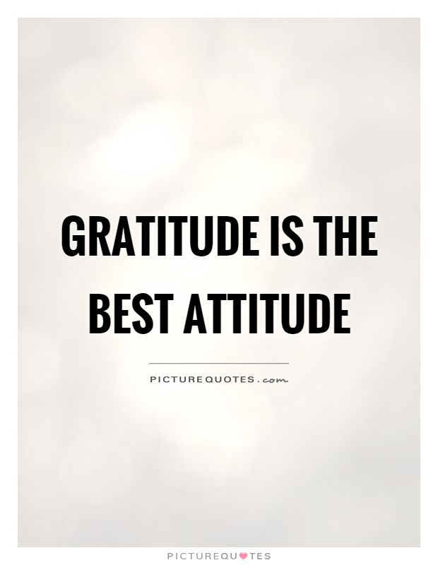Gratitude is the best attitude. Picture Quotes.