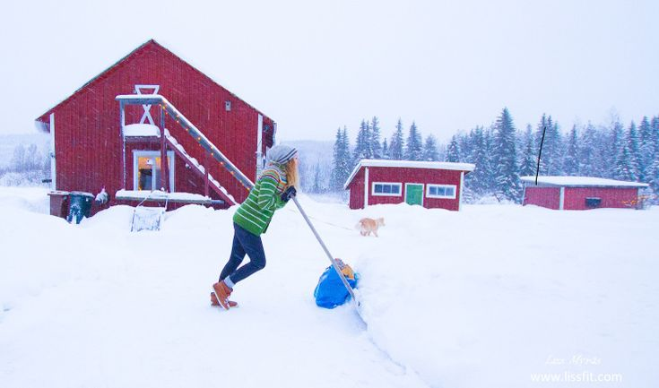 #snow #landscape #farm #home #sweden #norrland #bredbyn #shoveling #frost #retrokofte ##lapphund #hardwork #workout #farmhousestyle #barn #simpleliving #countryliving #femalefitness #scandinavian