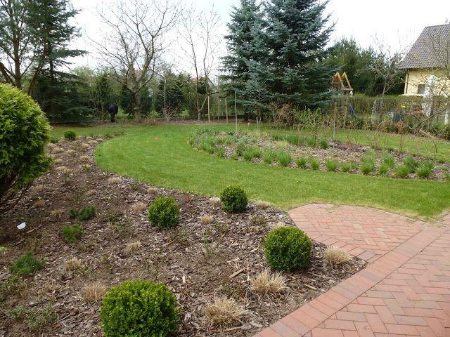 druga strona ogrodu: jeszcze jedna... łąka w ogrodzie