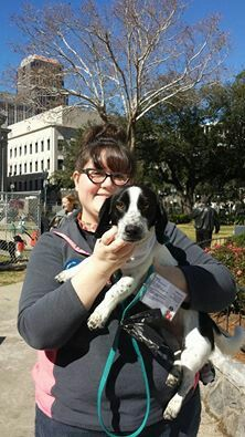 Mrs. O'Leary Doll had the pleasure of walking Patches at Buddy Break! Patches is up for adoption at the East Bank Jefferson Parish Animal Shelter. He's a beagle/dachshund mix and is calm, curious, and super friendly! Meet him and other adoptables at the Jefferson SPCA anytime! #modifieddolls #louisianadolls #modifiedwomen #supporting #charities #volunteering #SPCA #animal #shelter #adopt