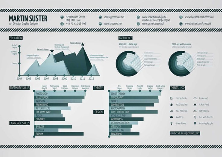 Best infographic resumes | Monster.com |Cool Infographic Resume Template