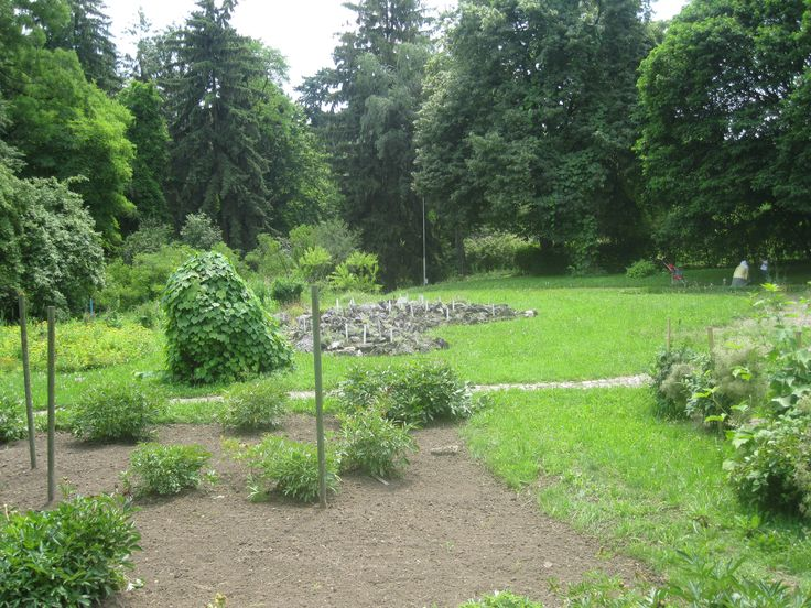 """Alexandru Borza"" Botanic Garden, Cluj-Napoca, Romania"