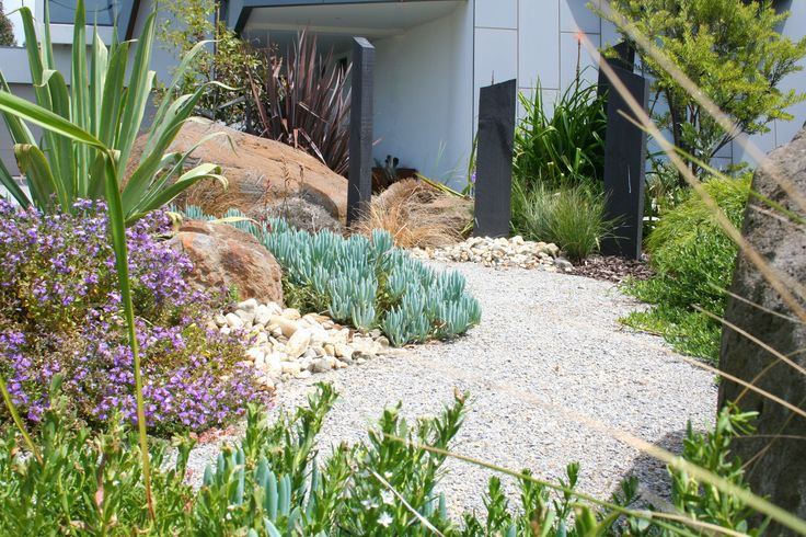 Coastal garden. www.rpgardendesign.com.au
