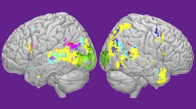 Inteligencia artificial y lecturas cerebrales como recursos para leer el pensamiento