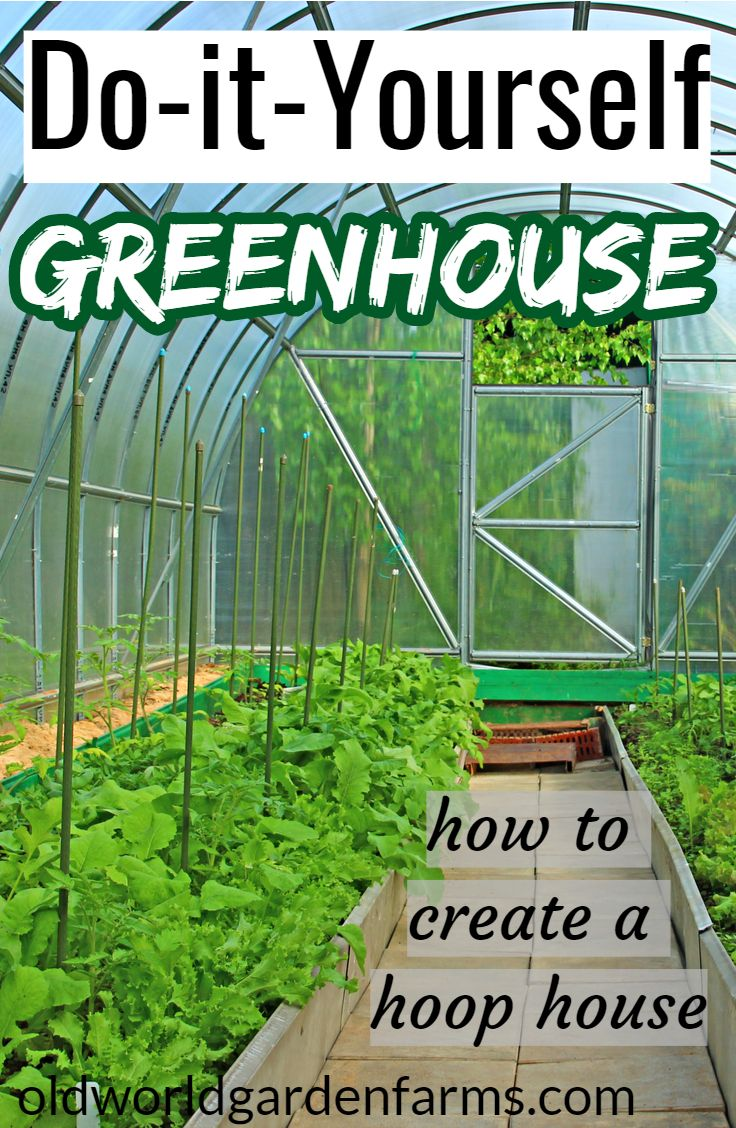Diy Greenhouse How To Create An Attractive Economical Hoop House Greenhouse Plans Greenhouse Diy Greenhouse