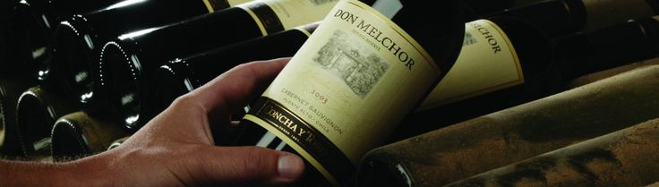 What is the concept behind Don Melchor?  http://www.conchaytoro.com/winemakers-journal/what-is-the-concept-behind-don-melchor/