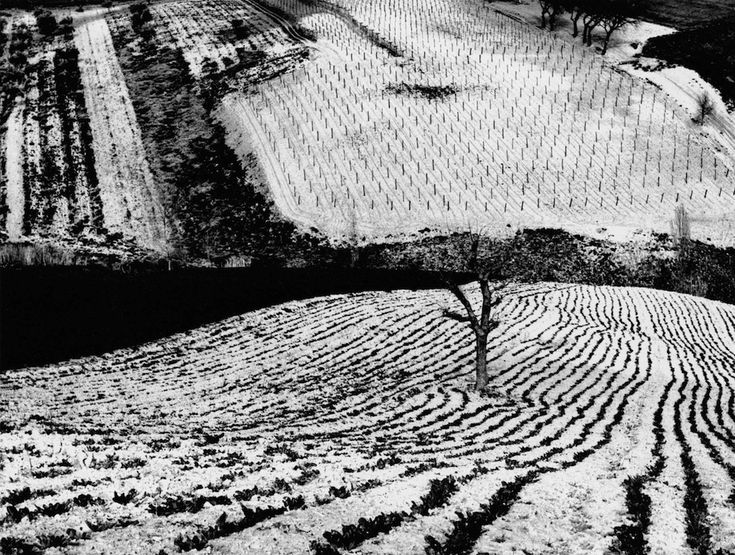"""MARIO GIACOMELLI, Paesaggio 283 (from the series """"On Being Aware of Nature""""), 1968"""
