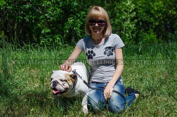 653 best #Bulldog best #equipment images on Pinterest | English ...