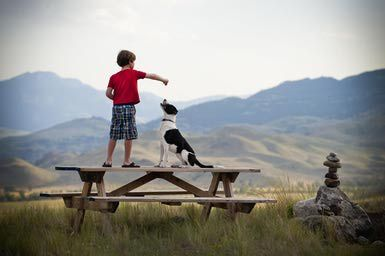 Pet Sitting Jobs for Kids
