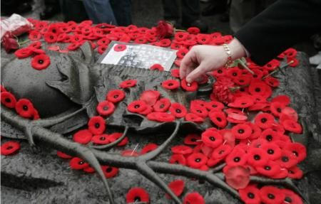 Poppies are placed on the Tomb of The Unknown Soldier during Remembrance Day ceremonies at the National War Memorial in Ottawa.