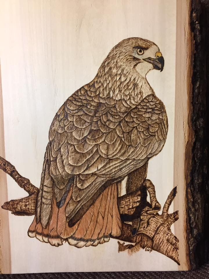Best images about bird wood burning patterns on