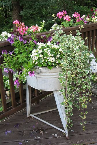 flowers overflowing in old wash tub