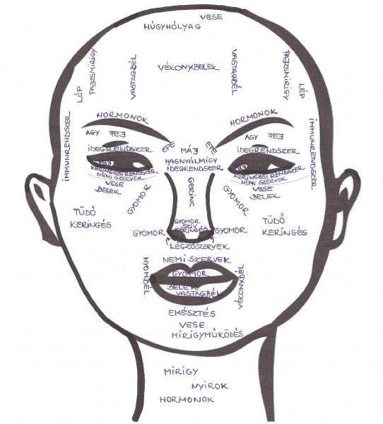 Minden bőrprobléma belülről fakad!A táplálkozásod, az életmódod és a lelki állapotod mind visszatükröződik a bőrödön. Nem elég kívülről tiszta, gyógyhatású...