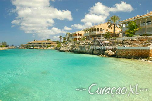 #Sealife #Curaçao - #Mambo #Beach - Vakantiehuizen #Curacao - #CuraçaoXL