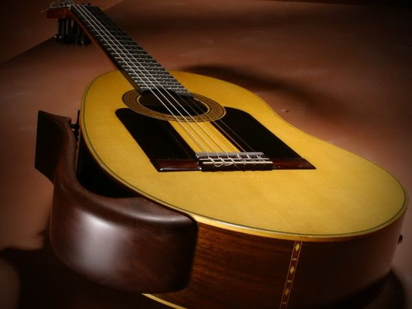 Flamenco Guitar Concept (2003)
