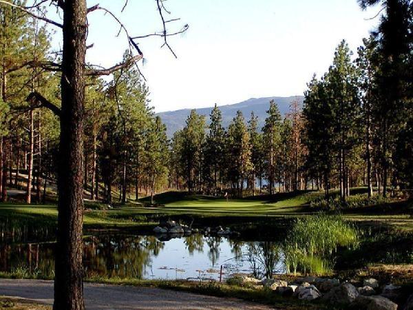 Vintage Hills Golf