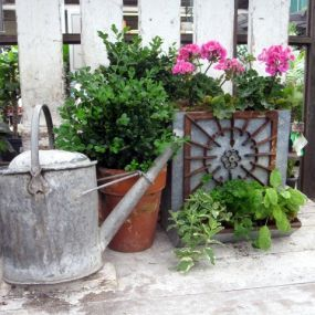 This planter is made from an old chicken feeder.  Very nice!  Can't wait to find me some of those!!
