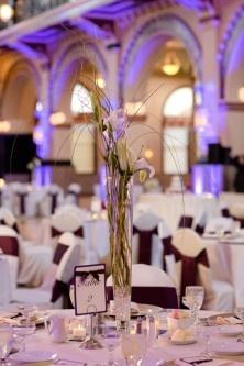 Purple Wedding Decor. Love the up lights