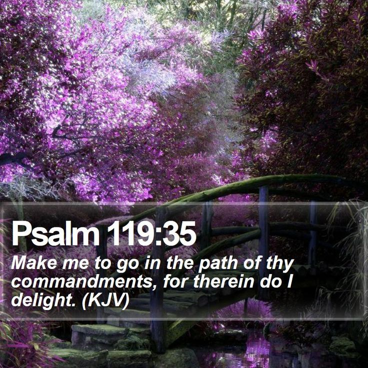 Psalm 119:35 Make me to go in the path of thy commandments, for ...