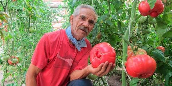 agricoltori bio argentina